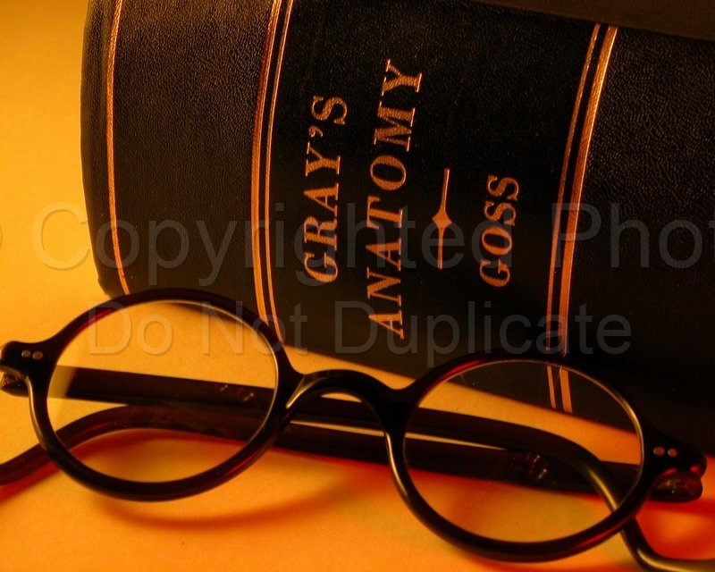 Spectacles - Tom Warner Photography spectacles, glasses, eyeglasses, vision, seeing, sight, eyes, anatomy, anatomical, optical, optic, yellow