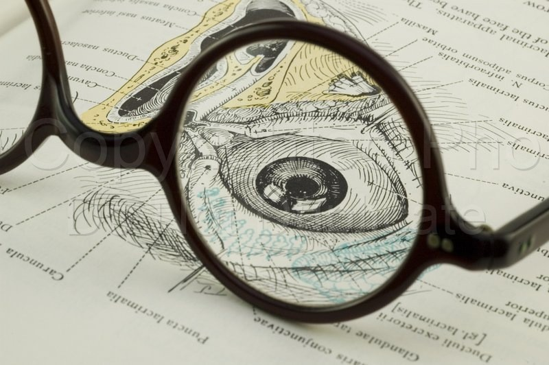 Spectacles - Tom Warner Photography spectacles, glasses, eyeglasses, vision, seeing, sight, eyes, medicine, anatomy