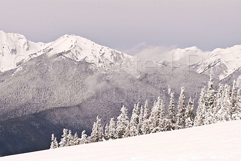 Scapes - Tom Warner Photography washington, cascades, mountain, snow, winter, ice, icy, travel, landscape, wilderness, nature, natural